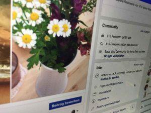 Social Media Marketing: Ausschnitt aus der Facebookseite - Personen, denen die Seite gefällt und Personen, die sie abonniert haben. Copyright by Sarah Dunkel